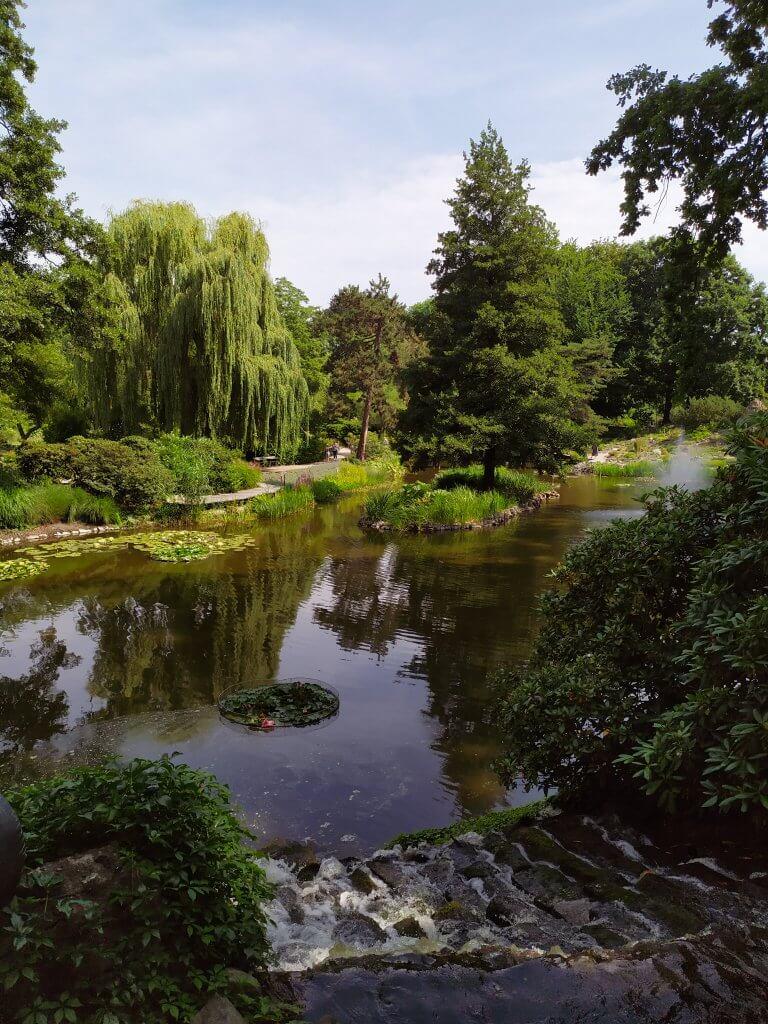 Wrocław atrakcje - ogród botaniczny