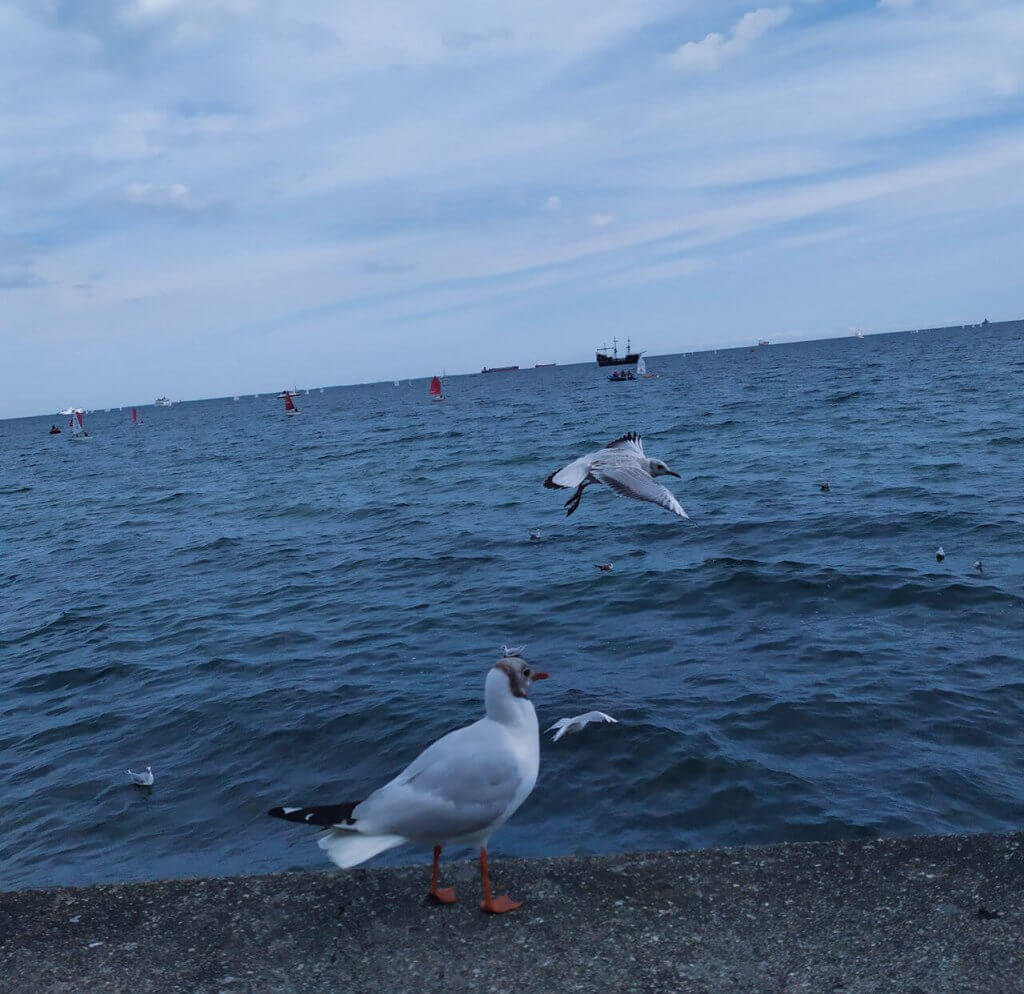 Atrakcje Gdynia