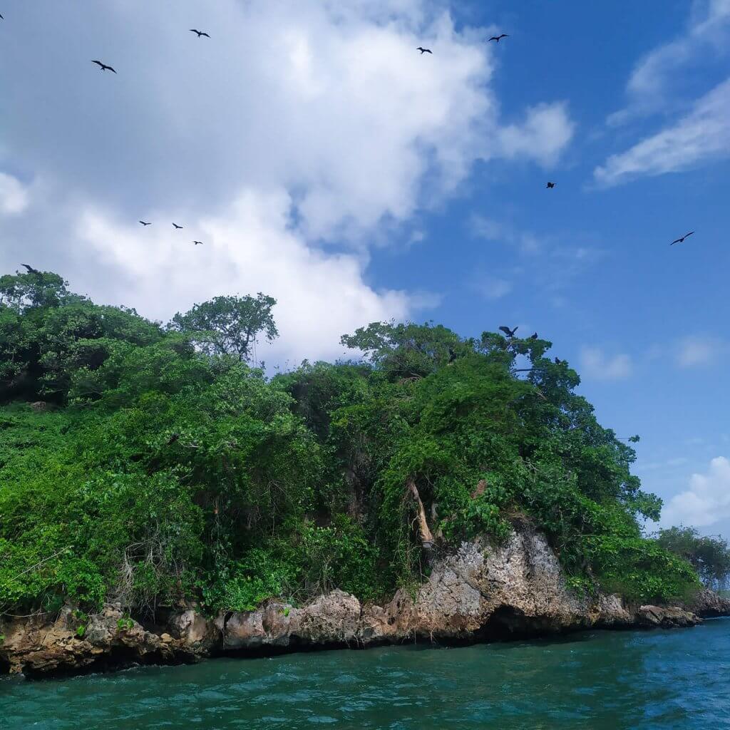 Park Narodowy Los Haitises Atrakcje Dominikana