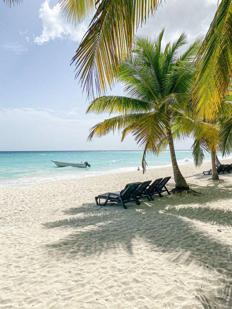 Wyspa Saona Atrakcje Dominikana