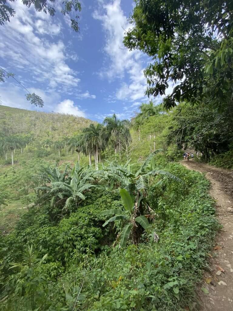 Wodospad El Limon Dominikana co zobaczyć